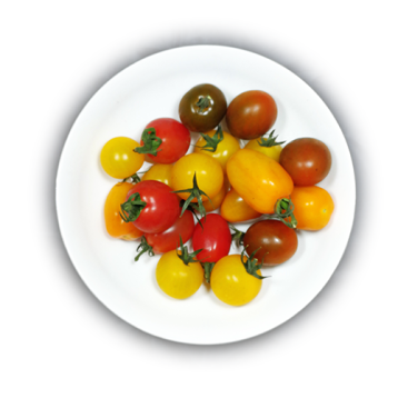 small colored tomatoes